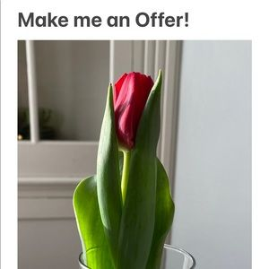 Send offers & Make bundles! Let's have some fun!